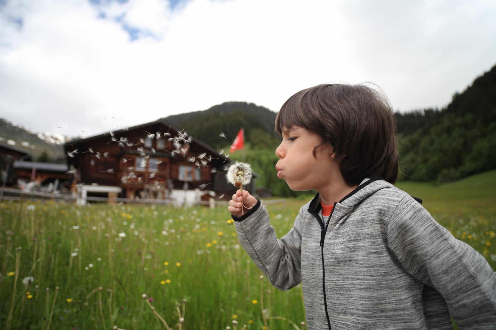 boy holding dandelion blowing near green grass field - encourage your child to explore