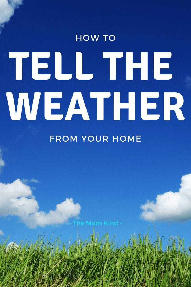 Weather prediction is a fun hobby, and it is a useful skill for those who love outdoor activities. If you know what to look for, you can make your weather predictions instead of waiting for the weather forecast. Here are four ways to monitor the weather in the comfort of your home.